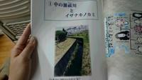 DSC_1034.JPG