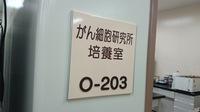 DSC_2530.JPG