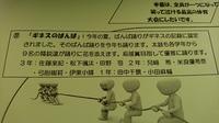 DSC_5069.JPG