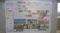 DSC_2220.JPG